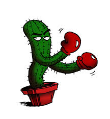 fighting_cactus